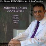 Murat Topoglu2